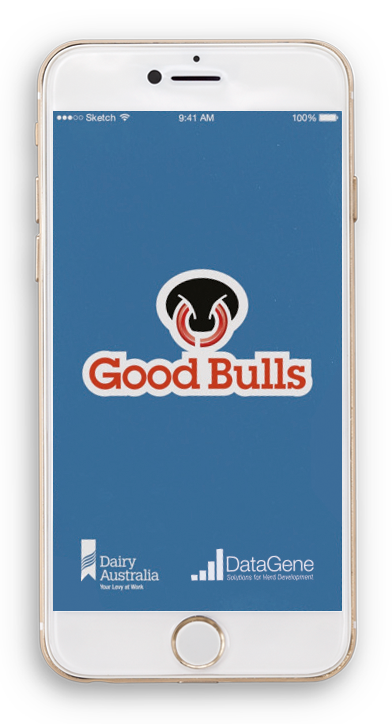 Good Bulls App splashscreen